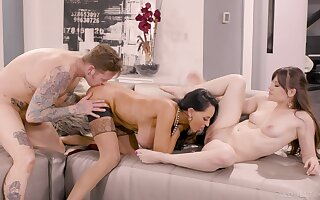 Aroused women patch the Hawkshaw in some of the best XXX scenes